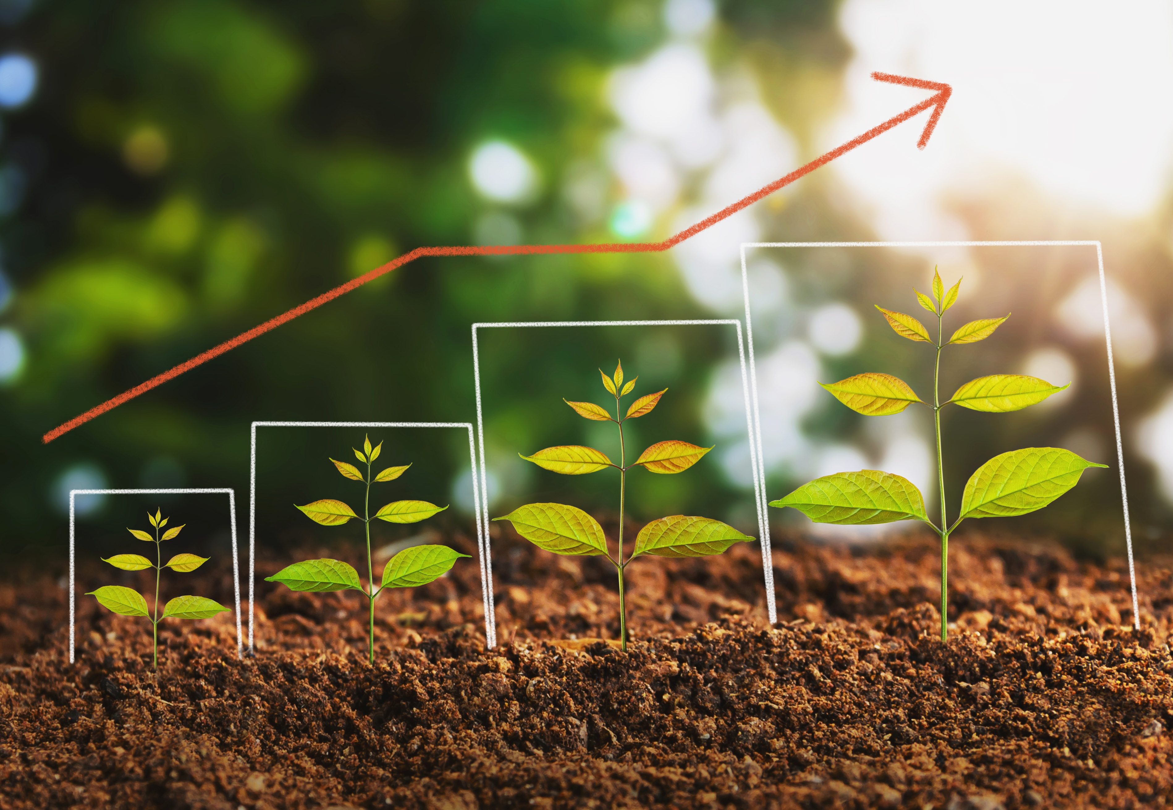 lead nurturing-1