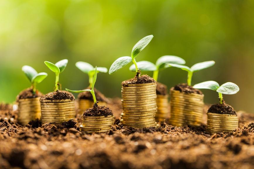 Ecobonus: l'asso nella manica per la crescita della tua azienda
