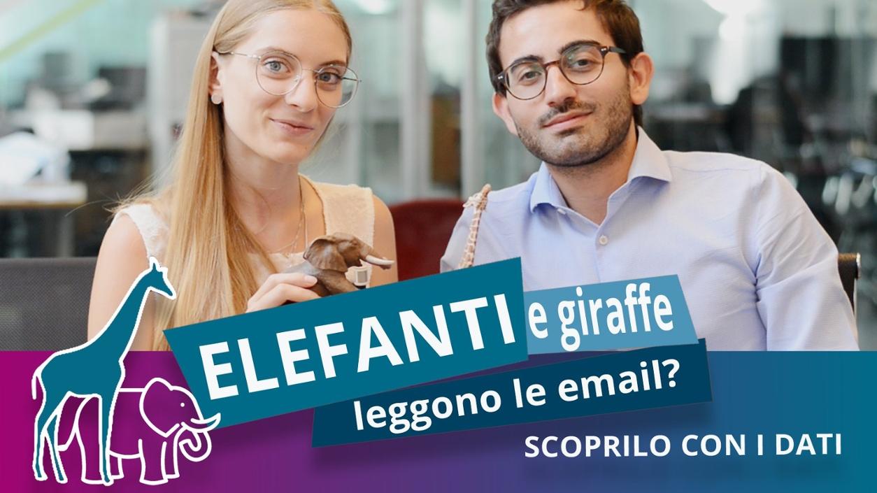 Elefanti e giraffe leggono le email? Scoprilo con i dati
